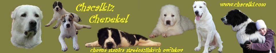 Chacalkiz Chenekel